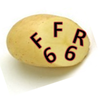 PATATE FFR.png